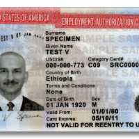 U.S. Citizenship and Immigration Services Announces Positive Change to Work Authorization (EAD) Extensions